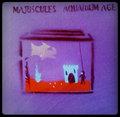 Majuscules image