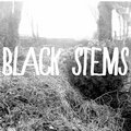 Black Stems image