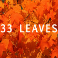 33 Leaves image