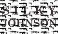 Silky Johnson image