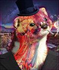 Grime Weasel image