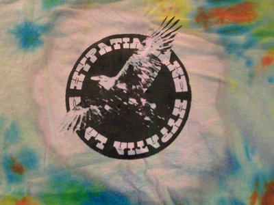 Raven Tie-Dye T-shirt main photo