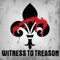 Witness To Treason image