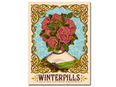Winterpills 'Flowerhead' poster by Nate Duval photo