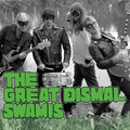 The Great Dismal Swamis image