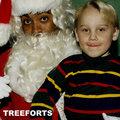 Treeforts image