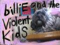 billiE and the violent kidS image