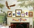 SoundEagle image