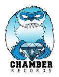 Ice Chamber Records image