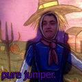 Pure Juniper image