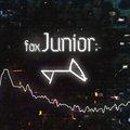 foxJunior image