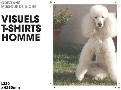 odezenne T shirt homme main photo