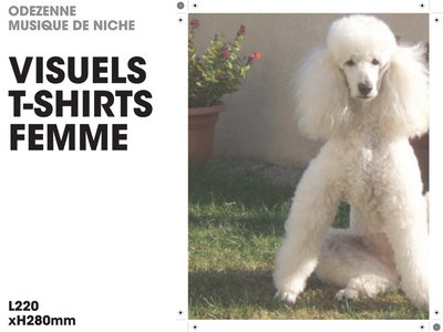 "odezenne ""T shirt tunique"" femme main photo"