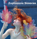 Explosions Sonores image