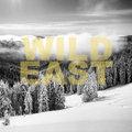 Wild East image