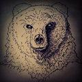 Black Rainbow Bear image
