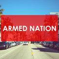 ARMED NATION image