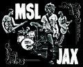 MSL JAX image