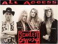 Scarlett Gypsy Band image