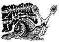 Snail's Pace image