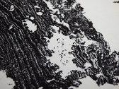 [VLEK16] Lawrence Le Doux - Terrestre - Handprinted & Numbered Zerkall Litho photo