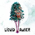 Liquid Amber image