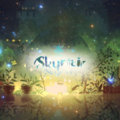 SkyFlair image