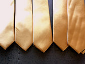 The OFFICIAL Brass Tie of The Brass Action photo