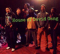 House of David Gang image
