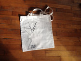 Discography in a bag photo