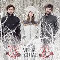 Vena Portae image