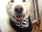 Black & White Checkerboard Bandana - New for 2015! photo