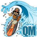 QM image