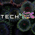 TechYES image
