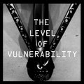 The Level of Vulnerability image