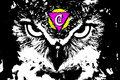 CAIRO UFFS image