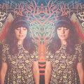 Gretchen Lohse image