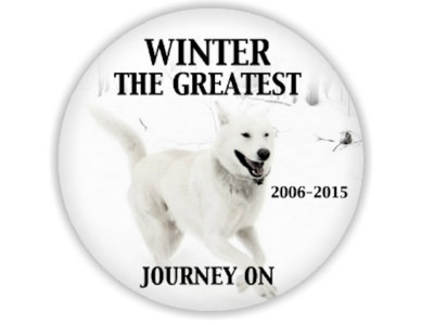 R.I.P. Winter The Greatest Memorial Pins main photo