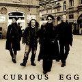 Curious Egg image