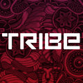 Tribe Records image