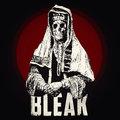 Bleak image
