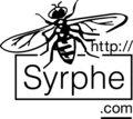 Syrphe image