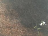 """A Mirror Darkly"" 9""x18"" Standard Giclée Print (Unframed) photo"