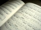 "Sheet Music Book ""Záhada"" (containing piano sheets of Sedmikrásky, Kyiv, Valse de Milena & more) photo"