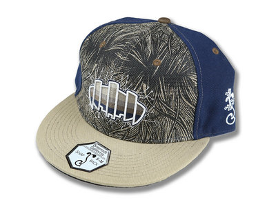 Blue Grassroots Snap Back main photo