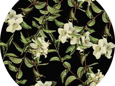 Yellow Flower Winter Single Slipmat main photo
