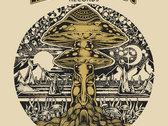 Henry Bennett Mushroom Wonderland Magnetic Eye T-shirt photo