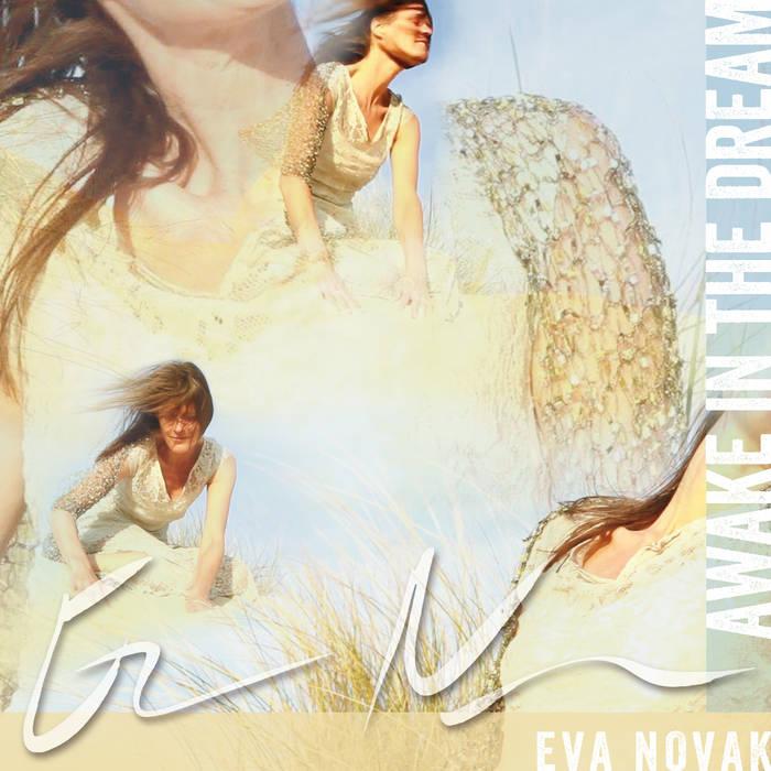 Awake in the dream cover art