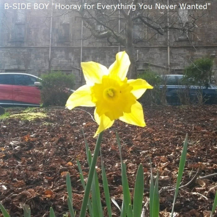 Hooray for Everything You Never Wanted (2 Track Single) cover art