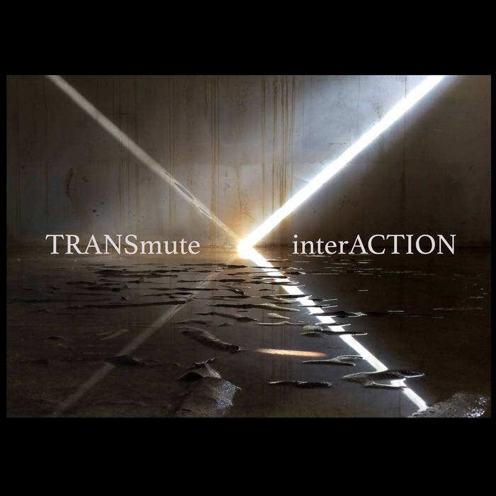 TRANSmute\interACTION cover art